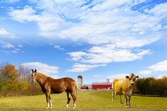 American Countryside Red Barn Stock Photography