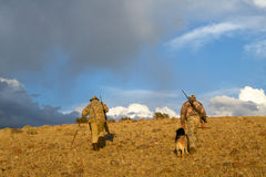 American coyote hunters and dogs in arid sunrise. Two American hunters dressed in camouflage with rifles, hiking in an arid landscape at sunrise with tracking Stock Images