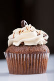 American cupcake Royalty Free Stock Images
