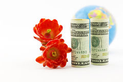 American currency, crimson blossoms, and globe Royalty Free Stock Images