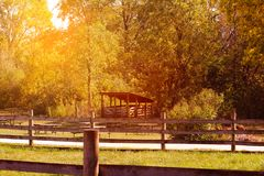 American dairy farm and barns in autumn season Stock Image