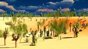 American desert Royalty Free Stock Photo