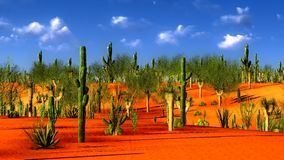 American desert Stock Photo