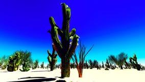 American desert Royalty Free Stock Photos