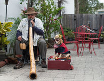 American Didgeridoo (Didjeridu). Player with dog wearing hat, sun glasses and formal American costume and flag on February 7, 2016, Saint Augustine, USA Royalty Free Stock Images