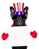 American dog Royalty Free Stock Photo