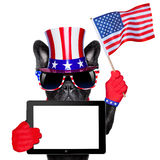 American dog Royalty Free Stock Images