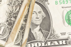 American dollar close-up Stock Image
