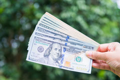 American dollars bank note in hand Stock Photo