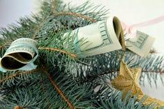 American dollars on the Christmas tree Royalty Free Stock Photos
