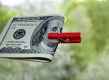 American dollars are clamped with a red clothespin. American dollars clamped with a red clothespin on a green background Stock Photo