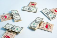 American dollars in mouse trap Royalty Free Stock Photo
