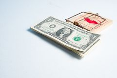 American dollars in mouse trap Royalty Free Stock Images