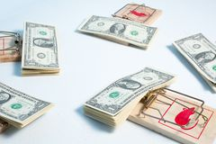 American dollars in mouse trap Stock Image