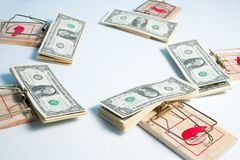 American dollars in mouse trap Royalty Free Stock Photos