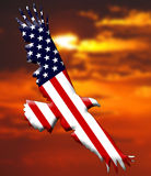 American Eagle flag Royalty Free Stock Images