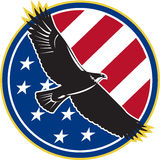 American Eagle Flying USA Flag Retro Stock Images