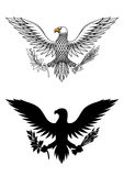 American eagle holding branch and arrows. American eagle holding an olive branch and arrows symbolic of war and peace Stock Photo