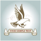 American eagle label. Hand draw american eagle in Stock Photo