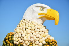 American Eagle Made Of Pumpkins Royalty Free Stock Image