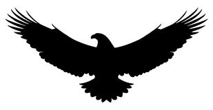 American eagle silhouette. Vector silhouette of a flying american eagle  on white background. Editable vector file available Stock Photography