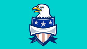 American Eagle With Stars and Stripes Shield stock footage