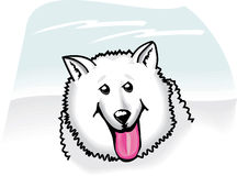 American eskimo cartoon Royalty Free Stock Photography