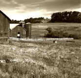 American Farm. Typical American Farm, Sepia Toned stock images