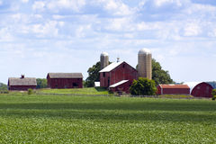 American Farm Stock Images
