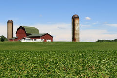 American Farm. In Hillsdale County Michigan with double silos royalty free stock photography