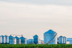 On american farm in  kentucky Royalty Free Stock Photography