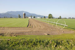 American Farm Land. Farm land in the United States Pacific Northwest royalty free stock photo