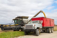 Soybean Harvesting with Combine Royalty Free Stock Photography