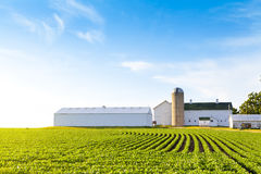 American Farmland Stock Images