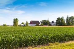 American Farmland Stock Photography
