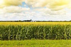 American Farmland Stock Photo