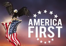 American feast 4th of July. Bald Eagle with American flag Royalty Free Stock Images