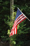 American Flag. Flying in the breeze royalty free stock photo