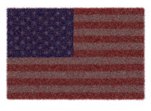 The American Flag Stock Images