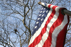 American Flag. On a pole royalty free stock images