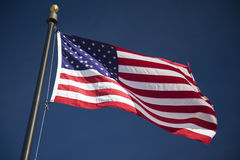 American Flag. Flag of the United States of America blowing in the wind Royalty Free Stock Images