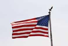 American flag. With eagle Royalty Free Stock Photo