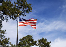 American flag. On a flagpole royalty free stock photo