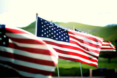 American flag. An american flag blowing in the wind Royalty Free Stock Photography