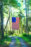 American flag above driveway Royalty Free Stock Image