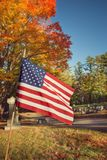 American flag in autumn cemetery Stock Photography