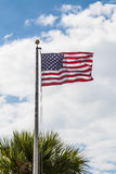 American Flag Blowing Over Palm Tree Royalty Free Stock Image