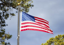 American flag blowing in the wind in a park. Stock Images