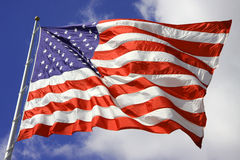 American Flag blows in wind Stock Image