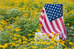 American flag on chair in yellow daisies Stock Photography